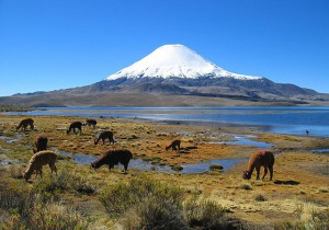 640px-Parinacota_volcano