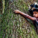 Piccolo Indio abbraccia un albero in Amazzonia